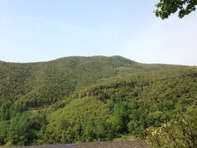 Moganshan Mountains, The Dragon Trip, China