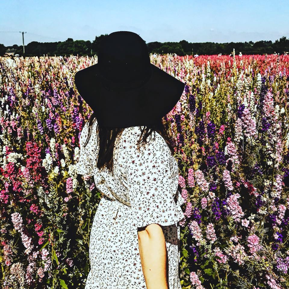 Real Confetti Flower Fields in Wick